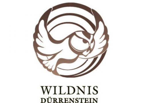 duerrenstein_web
