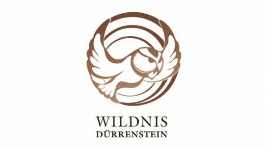 Logo Wildnis Dürrenstein