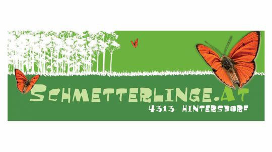 Logo Schmetterlinge.at